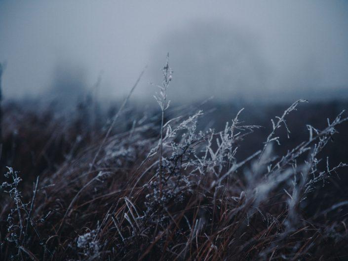 Zmrznutá temnota